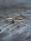 Twin Diamond Ring in Gold