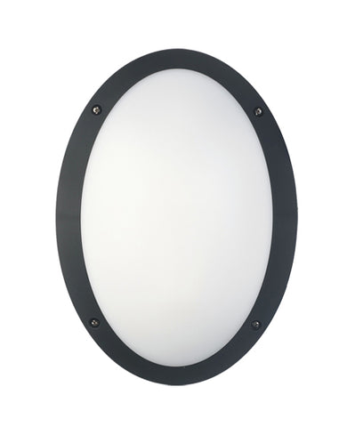 CLA Lighting Bulk LED Wall Light Oval Exterior Black or White 12W in 33cm