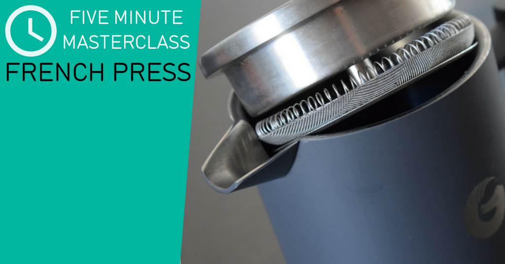 Coffee Gator Five Minute Masterclass - French Press