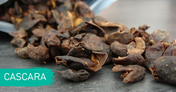 Coffee Gator 2019 Trend Report - Cascara