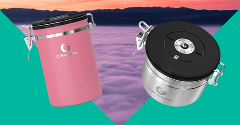 Coffee Gator Storage - Cloud Nine Coffee Valentine's offers