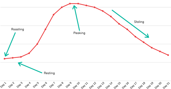 Coffee satling process graph over time