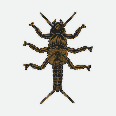Golden Stonefly Decal