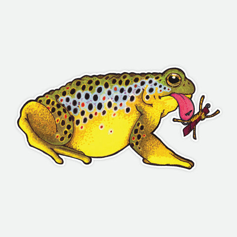 Toad Brown Trout Decal