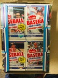 1984 Fleer baseball cards rare cello packs 24 packs box