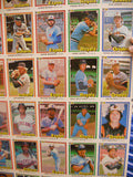 Donruss baseball cards rare uncut card sheet 1981