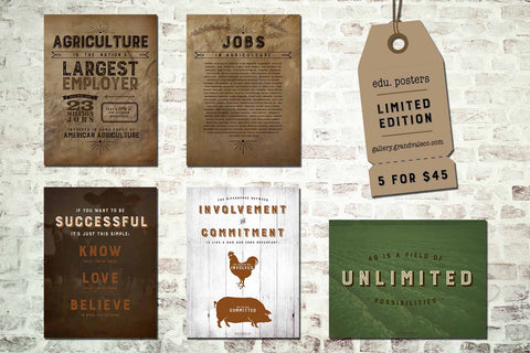 Set of 5 Inspirational Posters