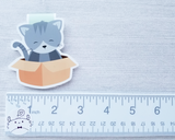 Cat in a Box Magnetic Bookmark