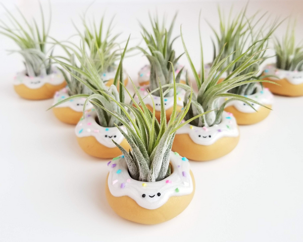 Donut Airplant Holder