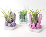 Crystal Style Airplant Holder