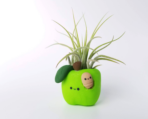 Apple (green) Airplant Holder