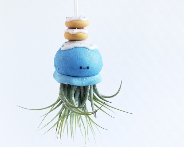 Jelly Donut Airplant Holder
