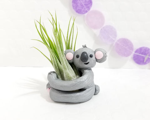 Koala Airplant Holder