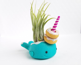 Donut Narwhal LIMITED Airplant Holder