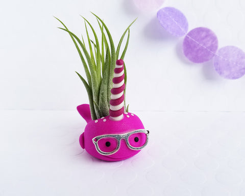 Nerdy Narwhal (pink) Airplant Holder Limited Edition
