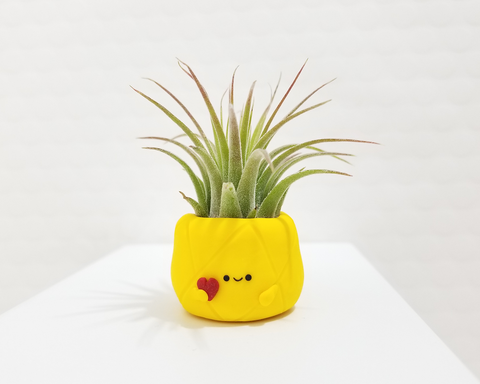 A Limited Edition Valentine Pineapple Airplant Holder