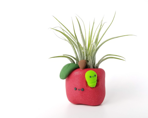 Apple (red) Airplant Holder