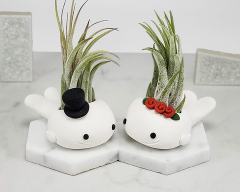 Whale, Set of 2 Formal Airplant Holders