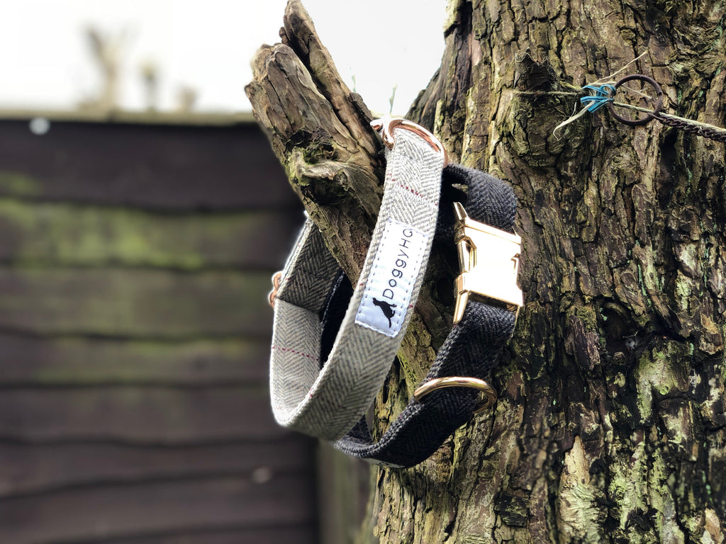 The Tweed Collection Collar Has Officially Launched!