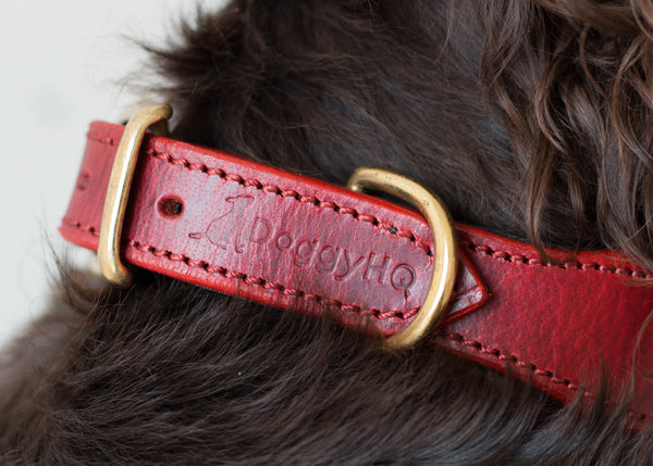 The Vintage Collection Collar (Claret Red) - Set of 2