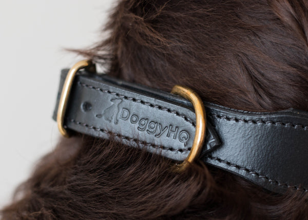 The Vintage Collection Collar (Liquorice Black) - DoggyHQ