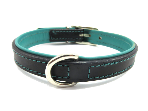 The Kingston Collection Collar (Aqua Blue) - DoggyHQ