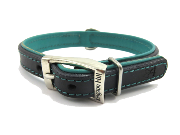 The Kingston Collection Collar (Aqua Blue)