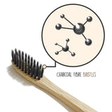 Activated Charcoal Powder & Natural Toothbrush Kit