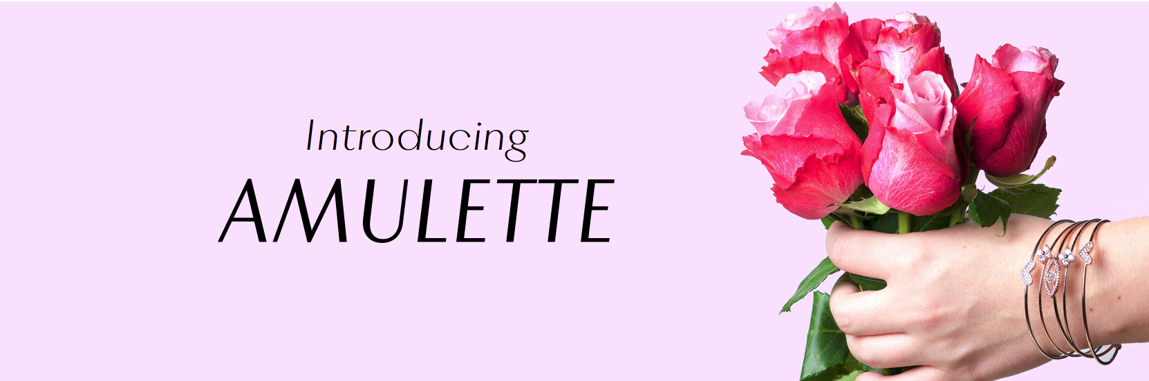 Introducing Amulette
