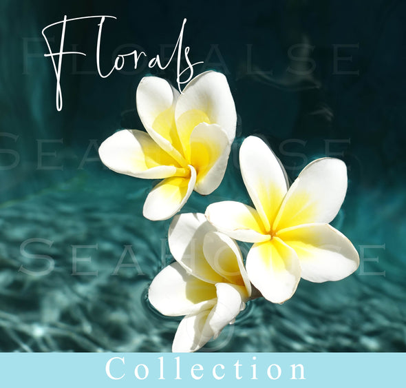 Florals Collection Image