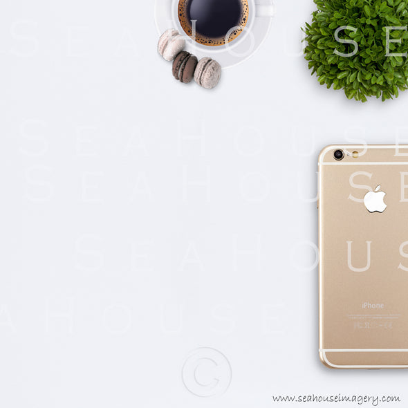 EXCLUSIVE USE 12 WM 12 Flatlay Phone Gold Back Expresso Coffee Smaller Macarons x3 Greenery Ball Square