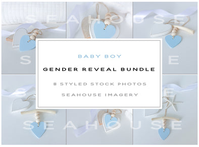 WM EXCLUSIVE USE Bundle - Baby Boy Gender Reveal Bundle