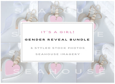WM EXCLUSIVE USE Bundle - It's A Girl Gender Reveal Bundle