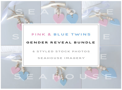 WM EXCLUSIVE USE Bundle - Twins Pink and Blue Gender Reveal