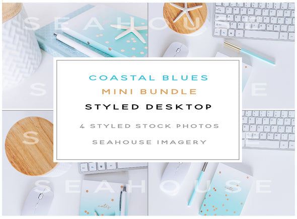 WM EXCLUSIVE USE Mini Bundle - Coastal Blues Modern Styled Desktop
