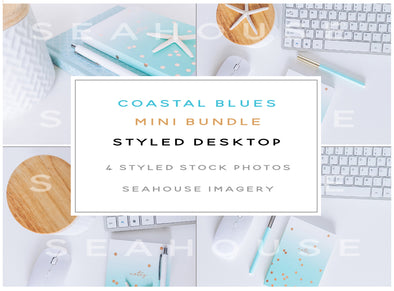 WM Mini Bundle - Coastal Blues Modern Styled Desktop