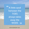 WM EXCLUSIVE USE Sand Between the Toes and Woes 5144