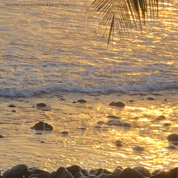 WM EXCLUSIVE USE Beach Golden Glow Sunset 7800 Background 1080 x 1080 Square Size
