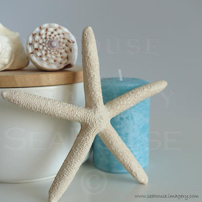 WM Blue Candle White Starfish Shells on Timber Canister 7460 Square Size