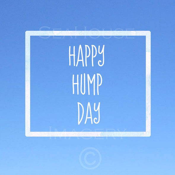 EXCLUSIVE USE WM Happy Hump Day Blue Square Size