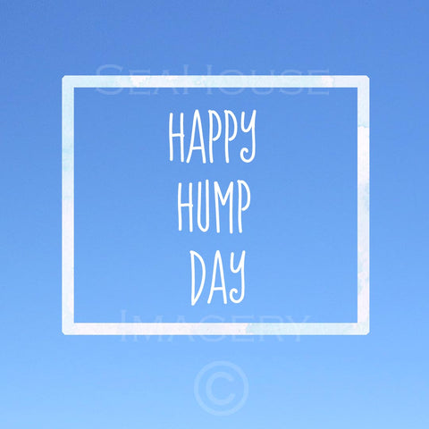 Happy Hump Day Blue Square Size