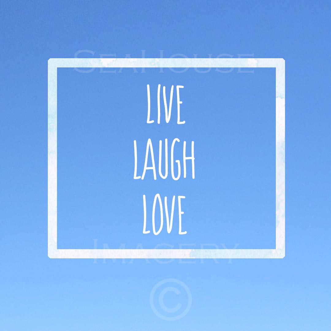 EXCLUSIVE USE WM Live Laugh Love Blue FREE Square Size