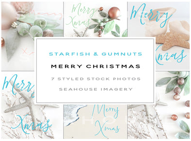 WM Bundle - Main Image Merry Christmas Starfish and Gumnuts