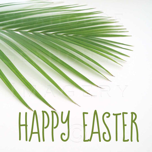 WM EXCLUSIVE USE Happy Easter Green Text Palm 5896 Square Size