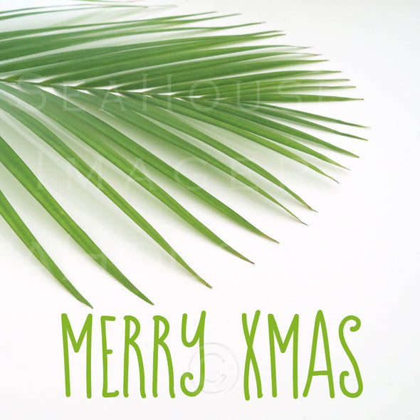 EXCLUSIVE USE WM Merry Xmas Green Text Palm 5896 Square Size