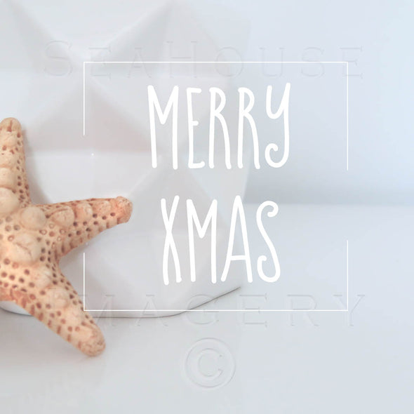 Merry Xmas Starfish Vase White 7876 Square Size
