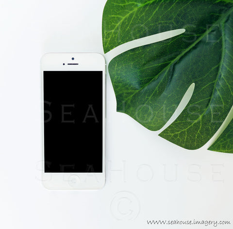 WM Monstera Leaf Phone 9059 Square Size