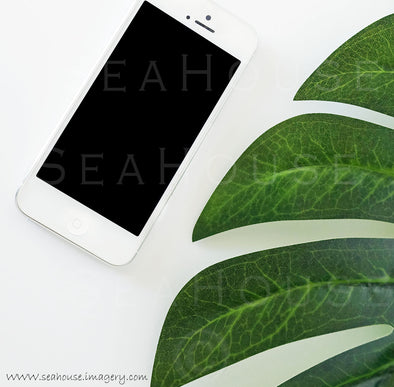 WM Monstera Leaf Phone 9079B Square Size