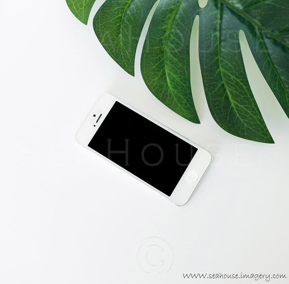 WM Monstera Leaf Phone 9078 Square Size