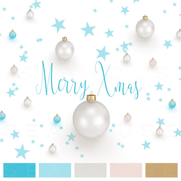WM EXCLUSIVE USE Mood Board Merry Xmas Coastal Silver Blue Blush Balls Blue Stars Blue Text Square Size